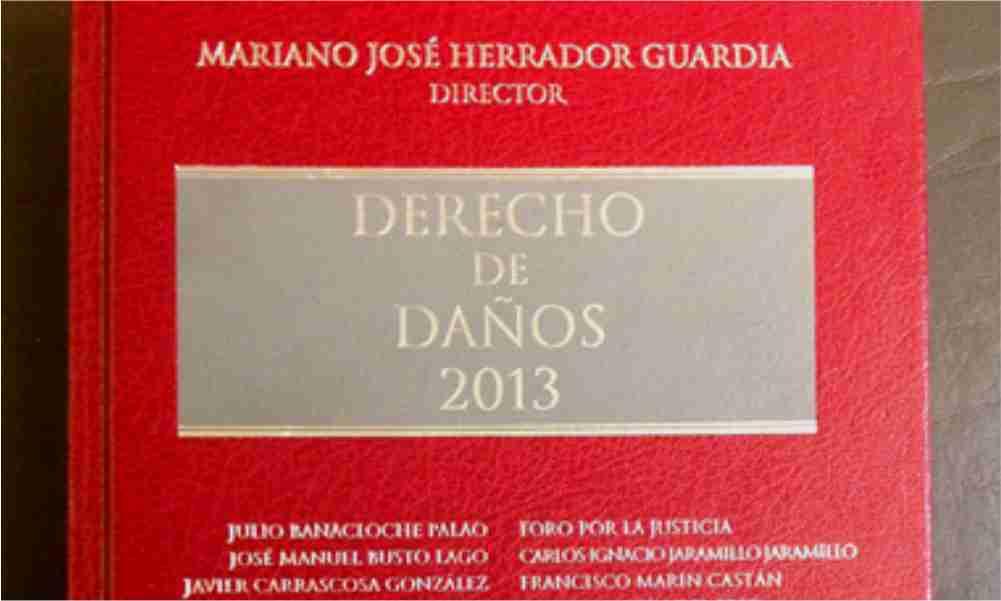 DERECHO DE DAÑOS 2013