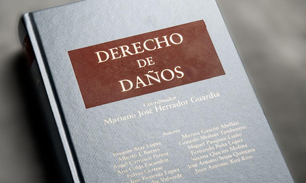 DERECHO DE DAÑOS 2011